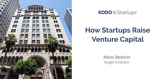 How Startups Raise Venture Capital