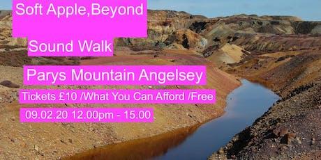Sound Walk, Sound Listening, Parys mountain circular,   tickets