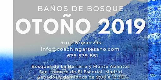 Baño de Bosque 15 Dic. - Especial Familias&Mascotas Bosques del Escorial