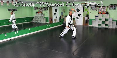 Adult Martial Arts in South Wantagh, NY (males & females)
