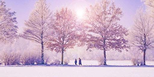 Hidden Springs Winter Wonderland Backyard Retreat
