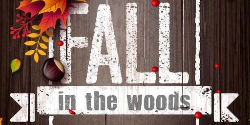 Fall in the Woods