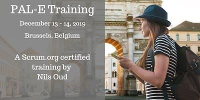 Professional Agile Leadership training (PAL-E) by Nils Oud