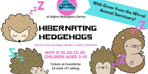 Hibernating Hedgehogs Wirral Unplugged wk10