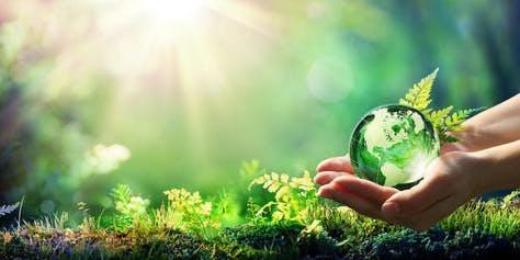 Chimica Verde - La Svizzera delle Idee
