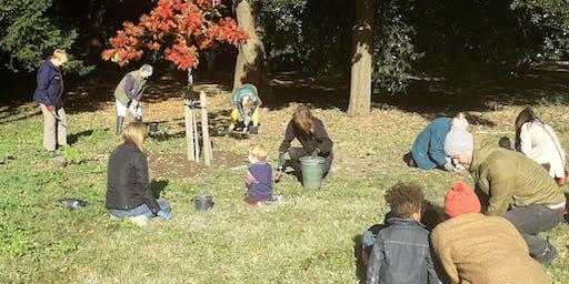 Community Bulb Planting