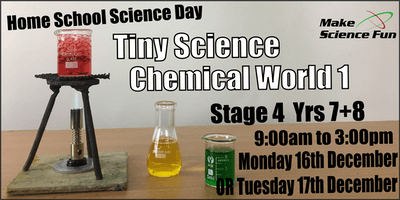 Make Science Fun - Homeschool TINY Science Day - Chemical World 1