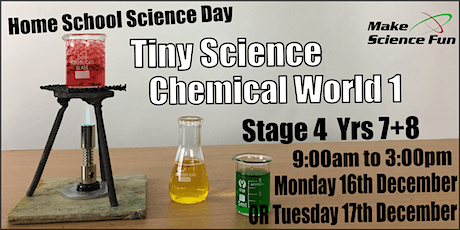Make Science Fun - Homeschool TINY Science Day - Chemical World 1 tickets