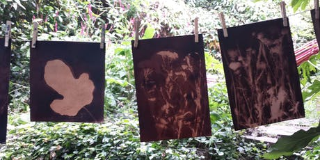 Botanical Cyanotypes: Blueprints and Browntoning tickets