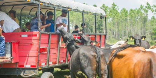 "Panama Boys and Girls Club  ""Kids and Cows""  Event at Diamond D Ranch"