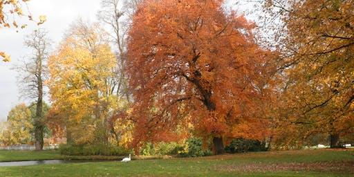 Heerlijcke Herfstbrunch