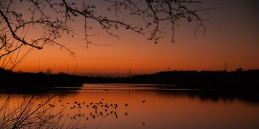 Dusk Walks at Fairburn Ings