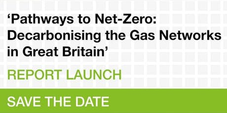 'Pathways to Net-Zero: Decarbonising the Gas Networks in Great Britain' tickets
