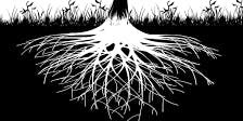 Sacred rituals for dark times - Part 1: Roots and resilience