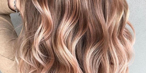 Denise Mahoney  Sunlights Balayage