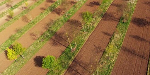 NFM Webinar: Farmers and Soil Management with Niels Corfield