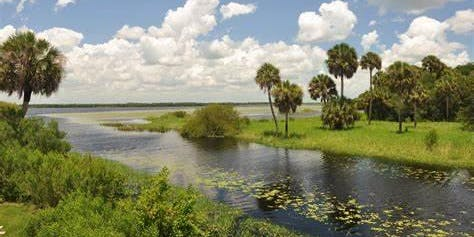 BioBlitz at Myakka River State Park