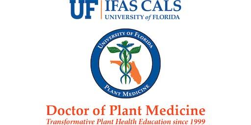 Plant Doctors: We're growing places!