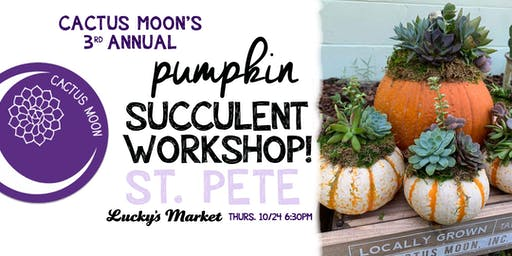 ST. PETE Pumpkin Succulent Workshop