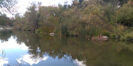 Alameda Creek/Niles Canyon Habitat Stewardship Mar 8, 2020 tickets