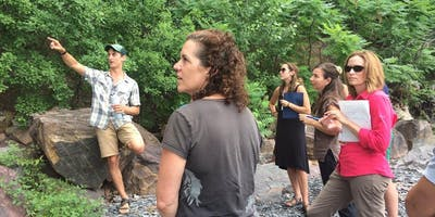 Education for Sustainability Immersion: August 2020