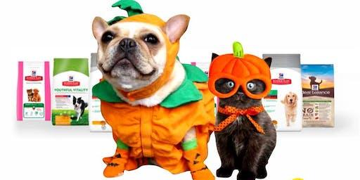 Concurso de Disfraces  Mascotas y Accesorios Mx*2 Noviembre 2019*