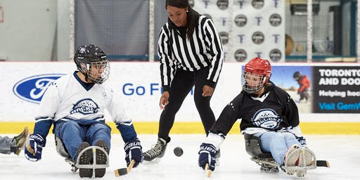 VIP Sledge Hockey Experience