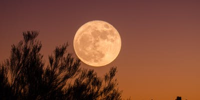 Full Moon Meditation + Astrology