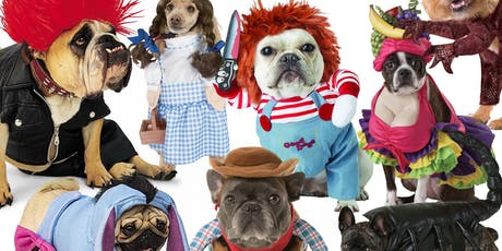 THE GREAT MUTT COSTUME CONTEST @ Jolene's Wed Oct 23rd 6pm - 10pm tickets