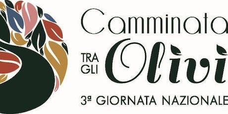 Camminate tra gli olivi in 123 città italiane biglietti