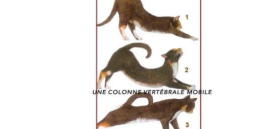 """Atelier FELDENKRAIS du samedi: """"La colonne vertébrale - l'axe et la spirale"""""""
