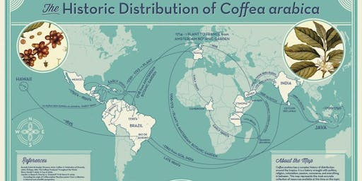 The Story of Coffee - Talk and Tasting