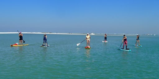 Paddle Tour of Shell Key