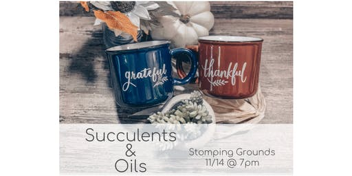 Succulents & Oils - Creating a LIVE Diffiser.
