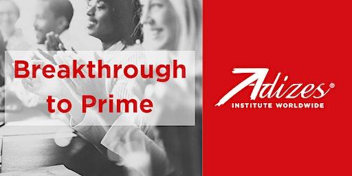 Adizes Breakthrough to Prime Workshop