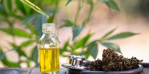 Let's Talk Cannabis - CBD & Sip Focus Group