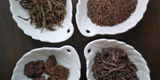 Atelier de découverte & de dégustation de thés vieillis / fermentés