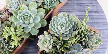 DIY Succulent Centerpieces @ Sweet Digs tickets