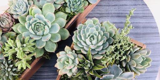 DIY Succulent Centerpieces @ Sweet Digs