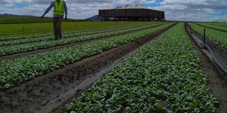 Vegetables 2040: the future of the veg industry in Tasmania. With tour! tickets