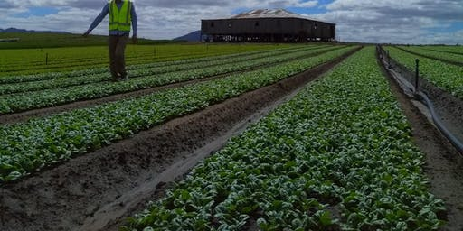 Vegetables 2040: the future of the veg industry in Tasmania. With tour!