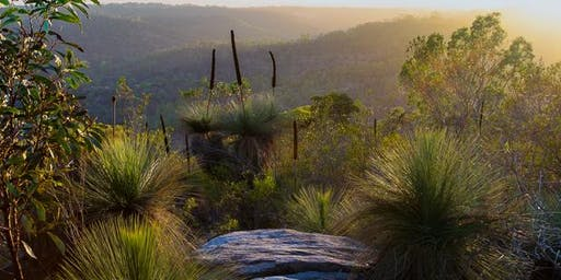 Guided ranger walk - Para Wirra Conservation Park
