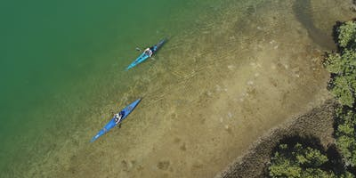 Guided kayak tour - Adelaide Dolphin Sanctuary