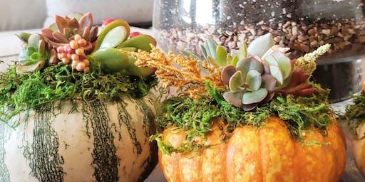 Pumpkin Decorating Workshop With Succulents