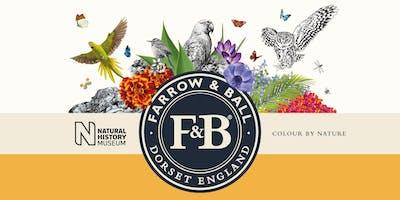 Farrow & Ball Colour Talk (plus Christmas preview evening at Nicholsons)