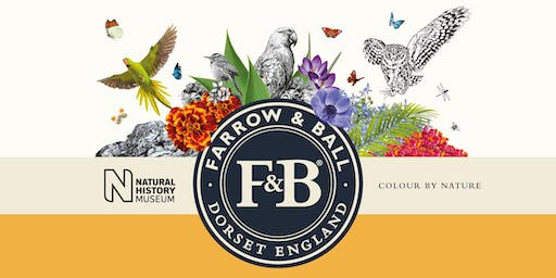 Farrow & Ball Colour Talk (plus Christmas preview evening at Nicholsons)