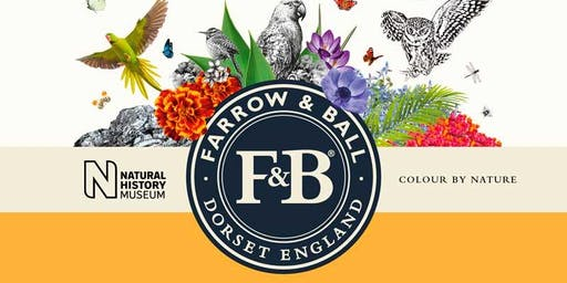 Farrow & Ball 'Colour by Nature' Colour Talk