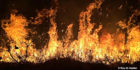 Investigating the physics of wildfires to help build resilience in society tickets