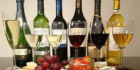 Holiday Wine Tasting: Sip, Savor &  Style!