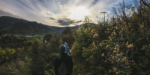 Caminata consciente y Meditación por Collserola